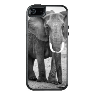 Female African elephant and three calves, Kenya. OtterBox iPhone 5/5s/SE Case