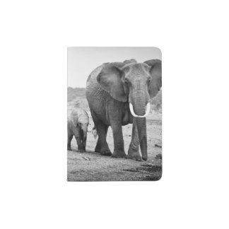 Female African elephant and three calves, Kenya. Passport Holder
