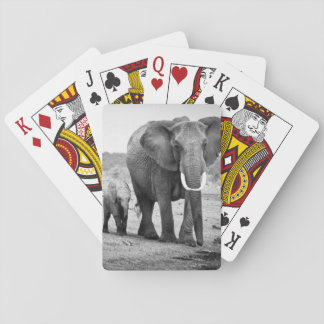 Female African elephant and three calves, Kenya. Playing Cards