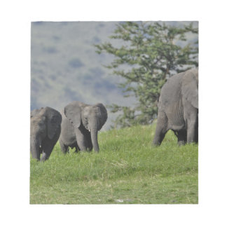 Female African Elephant with baby, Loxodonta 2 Notepad