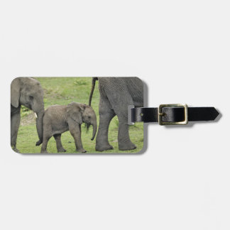 Female African Elephant with baby, Loxodonta 3 Bag Tag
