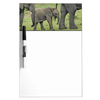 Female African Elephant with baby, Loxodonta 3 Dry Erase Board