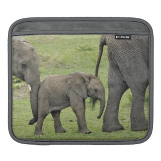 Female African Elephant with baby, Loxodonta 3 iPad Sleeve