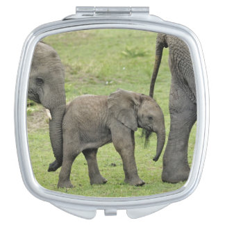 Female African Elephant with baby, Loxodonta 3 Makeup Mirror
