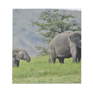 Female African Elephant with baby, Loxodonta Notepad
