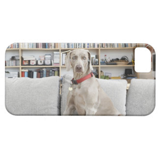 Female animal barely there iPhone 5 case