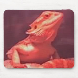 Female Bearded Dragon Mouse Pad