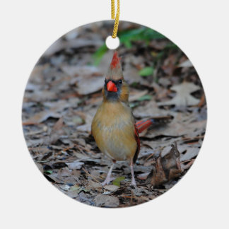 Female Cardinal 1 Round Ceramic Decoration
