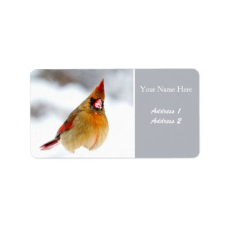 Female Cardinal Address Labels