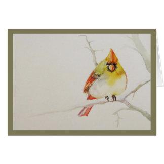 Female Cardinal.  Holiday card. Card