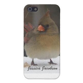 Female Cardinal iPhone 5 Case