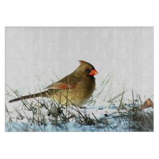 Female Cardinal on Snow Glass Cutting Board
