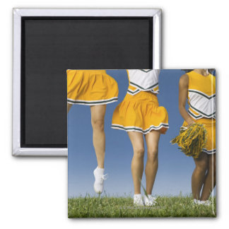 Female cheerleader's legs  (low section) refrigerator magnet