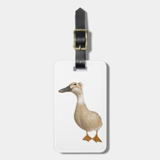 Female Crested Duck, 3 years old Luggage Tag