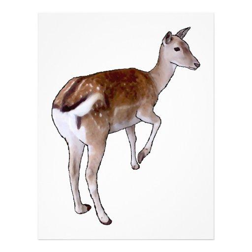 Female Deer. Flyers