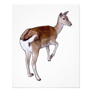 Female Deer Personalized Flyer