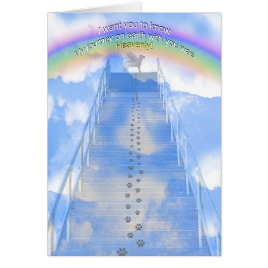 Female Dog Sympathy Card - Stairway to Heaven