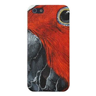 Female Eclectus Parrot iPhone 4 Case