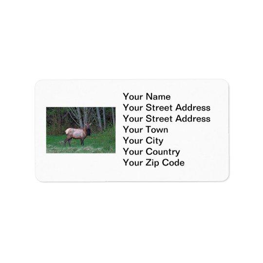 Female Elk Picture Label