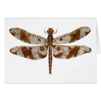 Female Filigree Skimmer Dragonfly Card