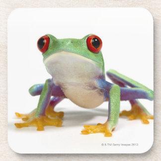 Female frog 2 coaster