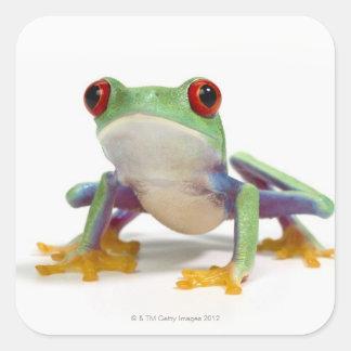 Female frog 2 square sticker