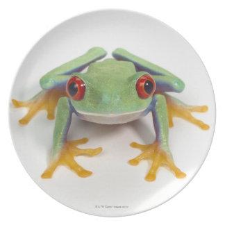 Female frog dinner plate