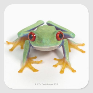 Female frog square sticker