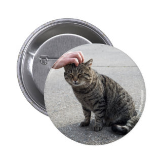 Female hand closeup petting stray gray cat 6 cm round badge