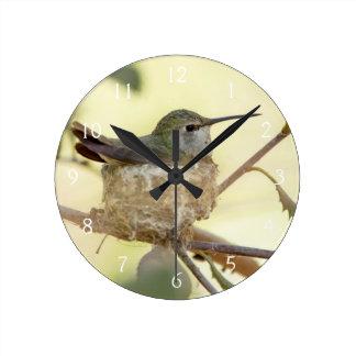 Female hummingbird on her nest round clock