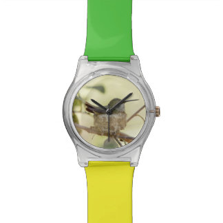 Female hummingbird on her nest wrist watch