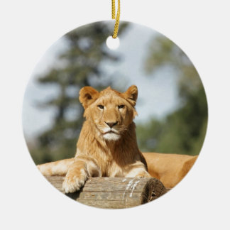 Female Lion Christmas Ornament