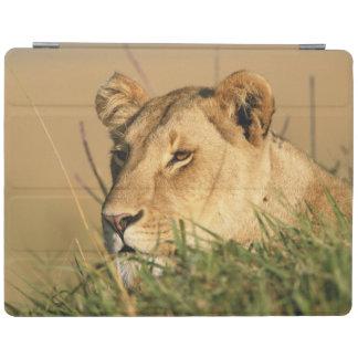 Female Lion iPad Cover