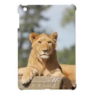 Female Lion iPad Mini Cover