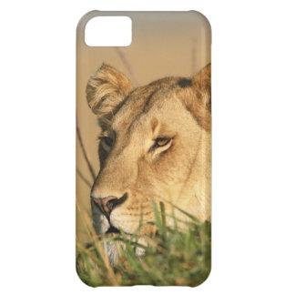 Female Lion iPhone 5C Case