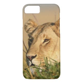 Female Lion iPhone 7 Case