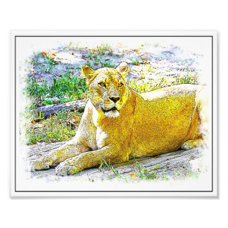 Female Lion Art Photo