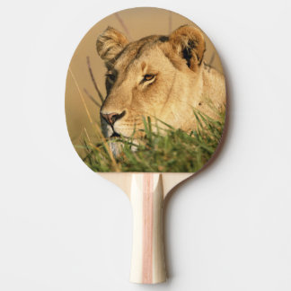Female Lion Ping Pong Paddle