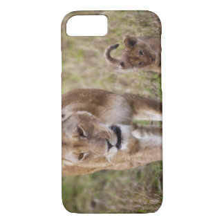 Female Lion with cub (Panthera Leo) as seen in iPhone 8/7 Case