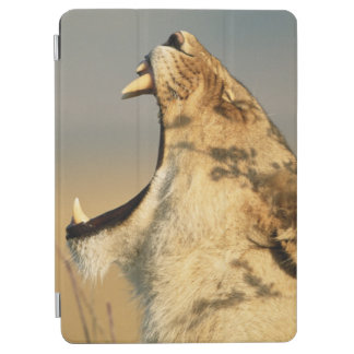Female Lion yawning iPad Air Cover