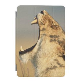 Female Lion yawning iPad Mini Cover