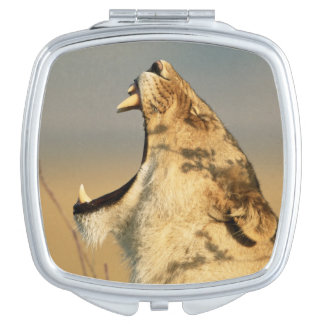 Female Lion yawning Vanity Mirror