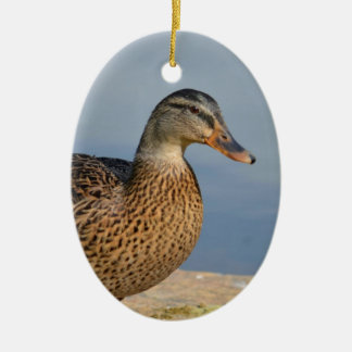 Female Mallard Duck Christmas Ornament