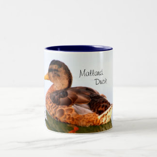 Female Mallard Duck Two-Tone Coffee Mug