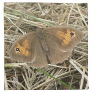 Female Meadow Brown Butterfly Napkin