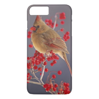Female Northern Cardinal among hawthorn iPhone 8 Plus/7 Plus Case