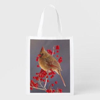 Female Northern Cardinal among hawthorn Reusable Grocery Bag