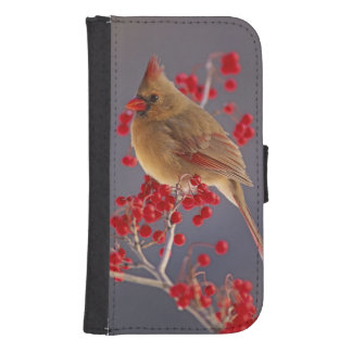 Female Northern Cardinal among hawthorn Samsung S4 Wallet Case