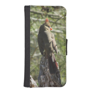Female Northern Cardinal Phone Wallet Cases