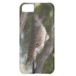 Female Northern Flicker Woodpecker iPhone 5 Case